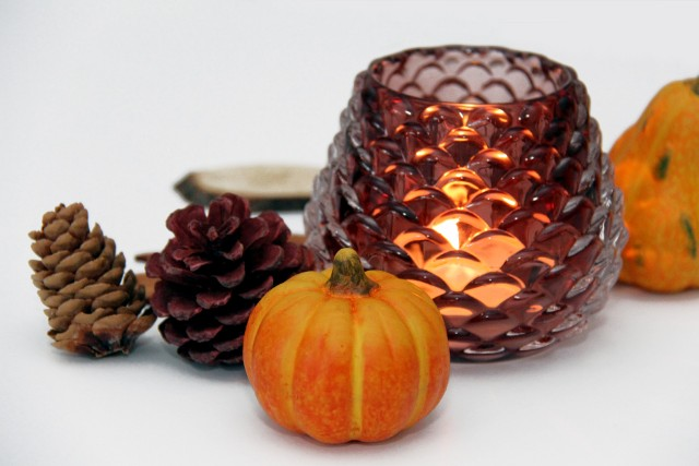 mini pumpkins and pine cone