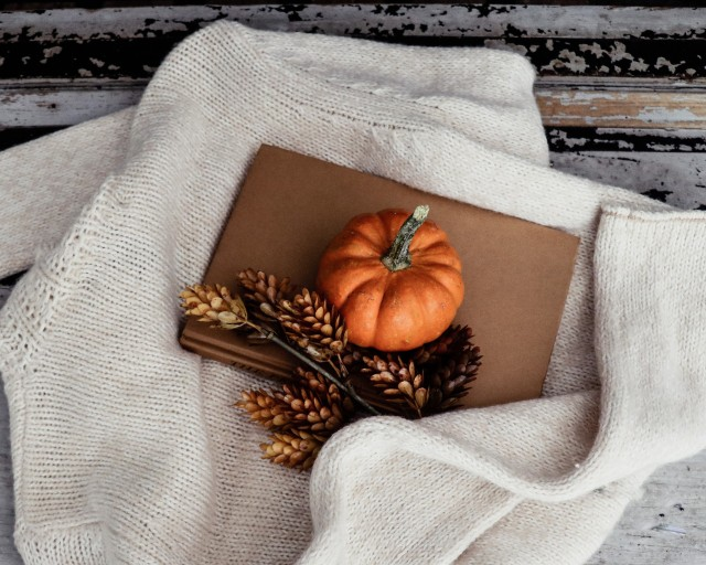 Cosy pumpkin and pine cone